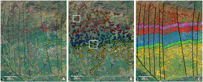 Fig. 2. (a) A tablet screen showing an aerial map view of the iGIS app. Dots colored by lithology represent data taken by a professional geologist at individual outcrops during the ­4-day digital mapping exercise. (b) Aggregate data collected by students during a single year of the digital mapping exercise (see Figure S2 in the online supplement for a composite map of 6 years of field data). Compare the data density with that in Figure 2a. White boxes highlight areas of conflicting data. (c) Geological map interpretation of student field data. Bold black lines are normal or oblique faults; thinner black lines are interpreted lithological contacts.