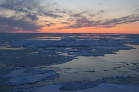 Sunset over the Arctic Ocean. Jessica K Robertson, USGS