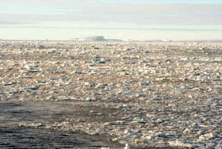 Sea ice in the Weddell Sea