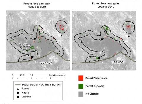A comparison of forest loss and gain during (left) and after (right) wartime. Image from Virginia Gorsevski.