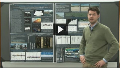 Screenshot from a video of a scientist presenting his ePoster at the 2014 Fall Meeting. Catch the full video here.