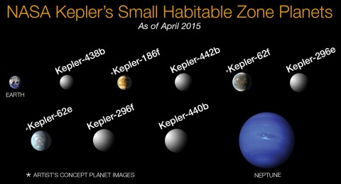 Small planets within habitable zones, identified by the Kepler mission. Credit: NASA