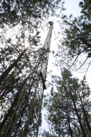 Looking up the 37-meter-tall atmospheric research tower. Credit: Meridith De Avila Khan/Sweet Briar College