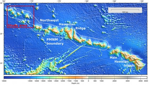 Fig. 1. Global topography of the main and northwestern Hawaiian Islands. Papahānaumokuākea Marine National Monument (PMNM) boundary is in white; the location of the study site is in red.