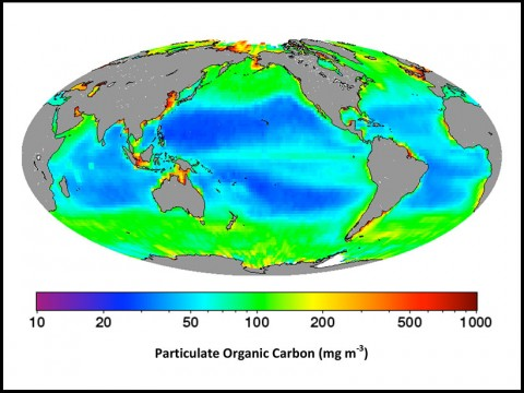 Global distributions of surface particulate particulate organic carbon from CALIPSO lidar measurements Credit: Supplementary Materials, Behrenfeld et al. [2013]