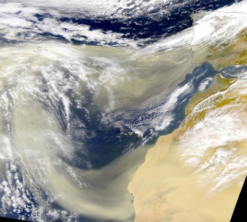 Dust streaming off the western Sahara. Credit: SeaWiFS Project, NASA/GSFC and ORBIMAGE