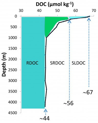 Fig. 1. Dissolved organic carbon (DOC) profile (solid line, with sampling depths from August 2008 indicated) and fractions (shaded regions) assigned in the western Sargasso Sea, in micromoles per kilogram. Concentration boundaries of the fractions shown are approximate. RDOC, refractory DOC; SRDOC, semirefractory DOC; SLDOC, semilabile DOC. From <em>Hansell</em> [2013].
