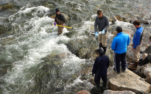 The team collects water from the Kangiqtugaapik River (near Clyde River) while explaining the process to Esa Qillaq and Noire Iqaluqjuak, residents of Clyde River hired to collect samples on a weekly basis between June and October. In the image, Matt Alkire wades into the river and collects water from the central channel using an extendable pole, Greg Lehn rinses the bottle three times before a final sample is kept, and John Kelly (far right) explains the sampling process to Esa and Noire. Credit: Rob Macdonald.