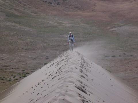 Workshop attendee Devon Burr, walking in the saltation cloud on the summit of a dune during the workshop's field trip to Idaho's Bruneau dune field. Credit: Jani Radebaugh