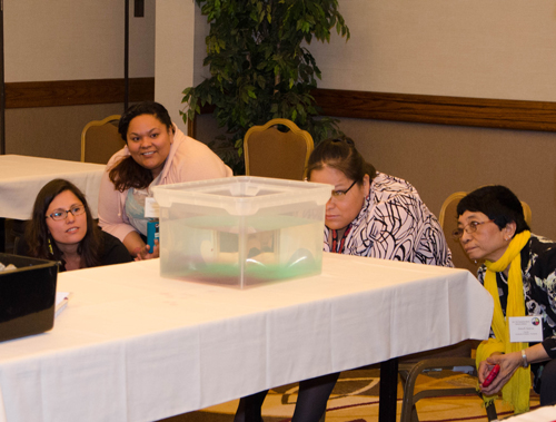 Conference participants closely observe a demonstration of thermohaline circulation at a workshop provided by Dr. Matthew Jones of CMOP. Credit: James Mohan/CMOP
