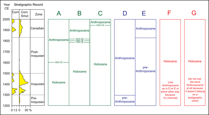 """Fig. 1. (left) A simplified pollen/spore diagram (redrawn from McAndrews and Turton [2010]) of the record from a lake sediment core with annual layers in southern Ontario, Canada. Variations in percentage of corn pollen (labeled """"corn"""") and spores from a corn smut fungus serve as a proxy for human impact. Chronology comes from layer counts and radiocarbon dating. (right) Seven of the many concepts of the word """"Anthropocene"""" (A–G) that divide this record. CE = Common Era. For additional discussion of various choices, see, for example, Autin and Holbrook [2012], Edgeworth et al. [2015], Finney [2014], Gale and Hoare [2012], Gibbard and Walker [2014], Lewis and Maslin [2015], Ruddiman et al. [2015], Steffen et al. [2015], and Zalasiewicz et al. [2014, 2015]."""