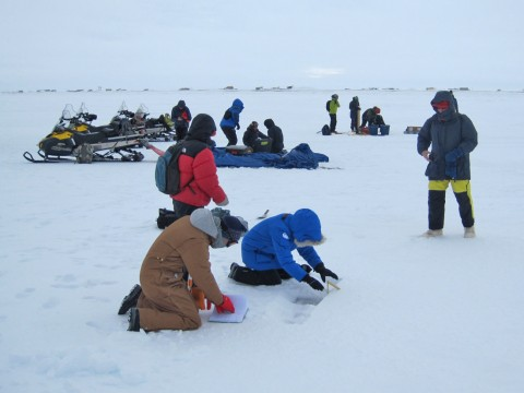 Participants at the Snow on Sea Ice Workshop take data in the field. Credit: Don Perovich