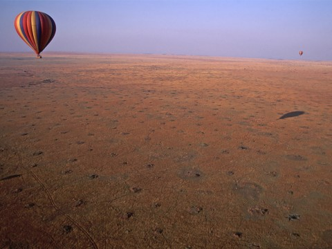 Thousands of termite mounds dot the Kenyan savannah. Credit: John Storr , Public domain