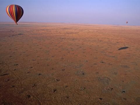 Thousands of termite mounds dot the Kenyan savannah. Credit: John Storr , Public domain
