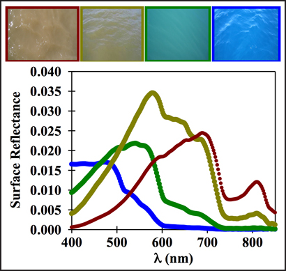 (top) Colors of inland (left) to ocean (right) waters and (bottom) their unique spectral signatures (reflectance as a function of light wavelength). Earth observation products include measurements of chlorophyll, cyanobacterial pigments, suspended solids, colored dissolved organic matter, transparency, turbidity, and other pollutants. Credit: CSIRO