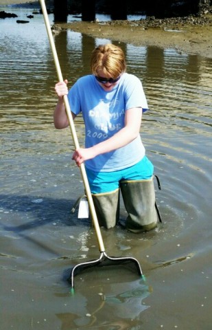 Marine scientist Charlotte Eckmann, collects grass shrimp from an estuary. Credit: Charlotte Eckmann