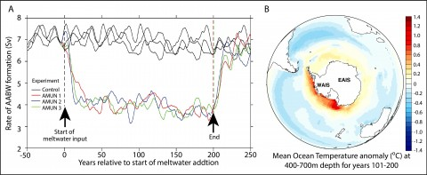 (a) Predicted changes in the rate of Antarctic Bottom Water formation based on the hypothesized collapse of the Amundsen Sea sector of the West Antarctic Ice Sheet (WAIS) over 200 years (termed AMUN), plotted against the preindustrial control simulation to demonstrate the background natural variability (10-year running means). (b) The average ocean temperature anomaly (degrees Celsius) between 400 and 700 meters across the Southern Ocean predicted for years 101–200 of the experiment (relative to the start of meltwater addition). Credit: Christopher Fogwill