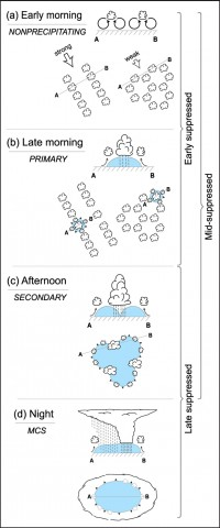 A schematic showing (a) the organization of nonprecipitating clouds, (b) the production of cold pools from precipitating cells, (c) the initiation of new, deeper clouds along intersecting cold pool boundaries, and (d) the eventual growth to mesoscale convective systems overnight during the transition from suppressed to active MJO periods. Early, middle, and late suppressed brackets refer to the general time within the suppressed periods when these sequences of events are observed. Credit: Rowe and Houze, 2015, doi:10.1002/2014JD022948