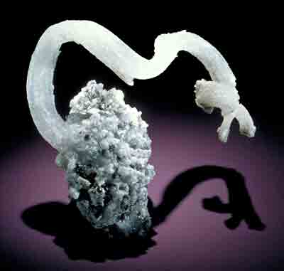 A specimen of the mineral gypsum exhibits sinuous crystal growth.