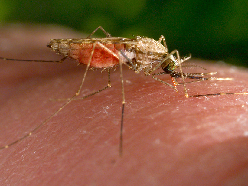Climate Predictions and Infectious Diseases in Southern ...