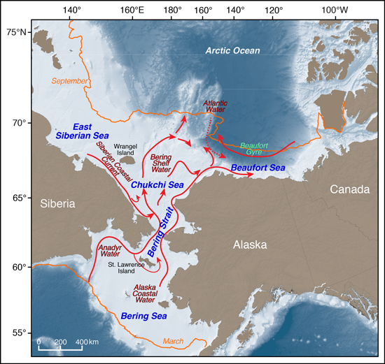 Pacific Arctic with sea ice extent and currents