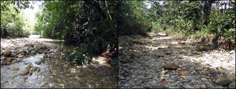 Chaki Mayu, Amazonia, Bolivia, during flowing and dry phases.