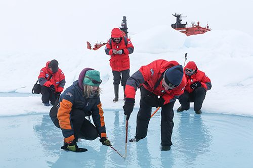 Citizen scientists measure melt pond depth at North Pole.