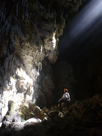 Cueva Dos Ojos, part of the Cueva Larga cave group where samples were taken.