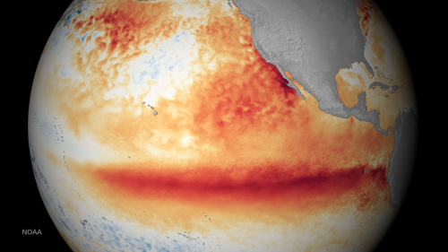 Satellite image shows the average sea surface temperature during the 2015–2016 El Niño.