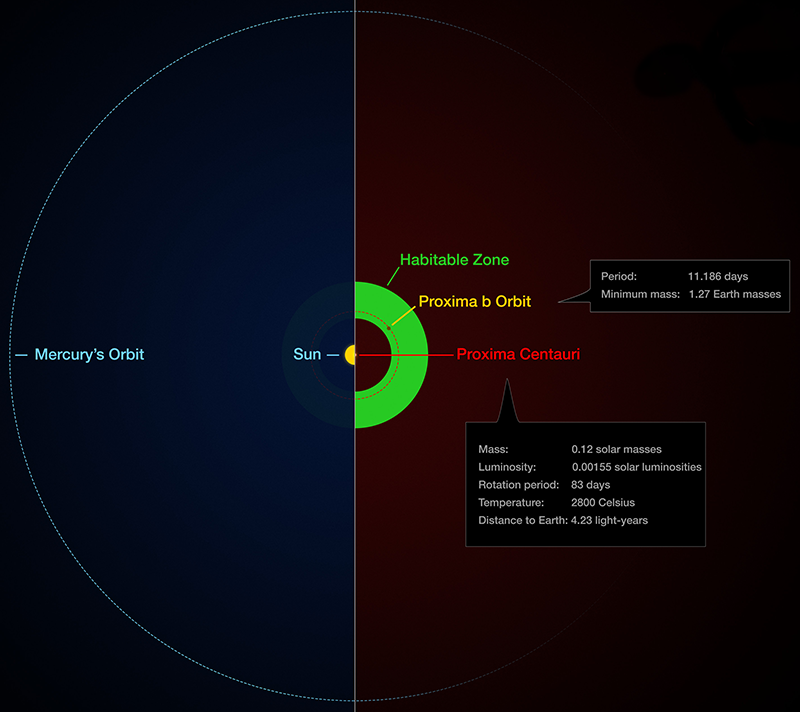 Diagram of Proxima b's orbit compared to relative locations in solar system.