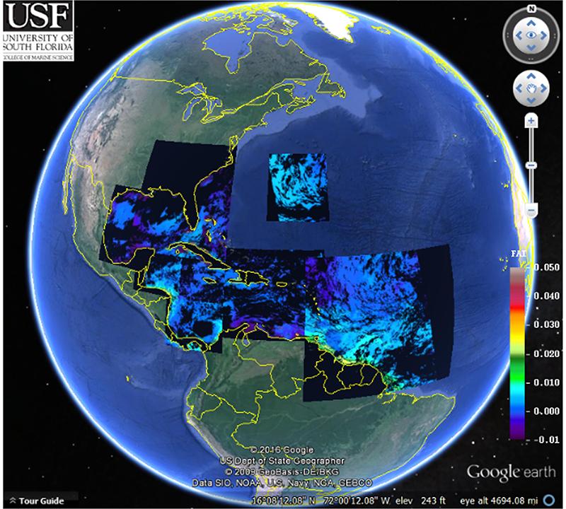 <em>Sargassum</em> Watch System at the University of South Florida covers the Intra-Americas Sea.