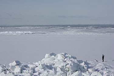 Local Iñupiat hunter looks at drifting sea ice near the edge of shorefast ice at Barrow, Alaska.