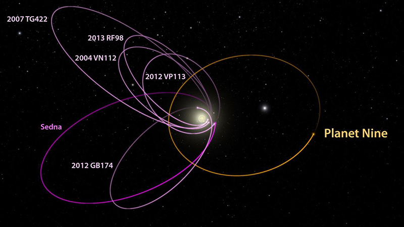 Graphic representation of the orbits of several large objects and the proposed Planet 9.
