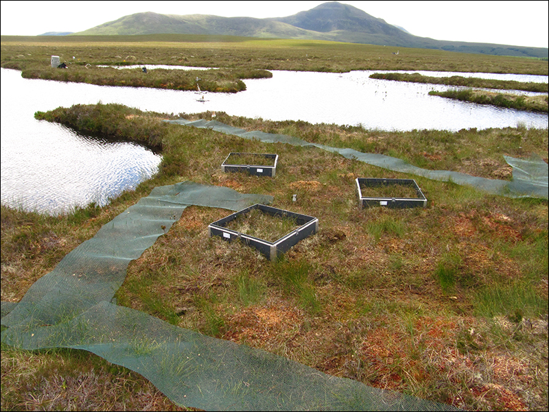 Measuring the effects of pools on greenhouse gas dynamics on peatlands, Scotland, U.K.