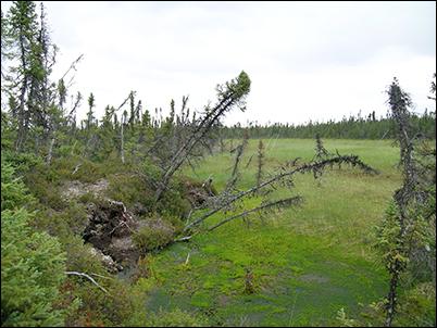 Thermokarst wetland