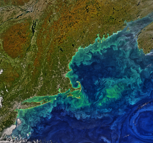 Phytoplankton swirls off the coast of New England this fall in the eddy field between the Gulf Stream and the Gulf of Maine. This 7 October image is from the aqua satellite's Moderate Resolution Imaging Spectroradiometer (MODIS); GEO-CAPE plans to collect similar images every 1–3 hours of all coasts along North America. Credit: Aqua-MODIS