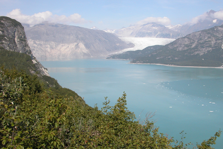 A 2004 photo of Alaska's Muir Glacier.