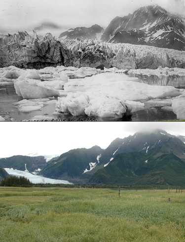 Two photos of the Pedersen Glacier, Alaska, showing extent of landscape change from (top) 1917 to (bottom) 2005.
