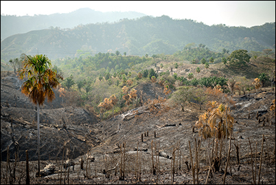 2016 San Juan Nepomuceno fire.