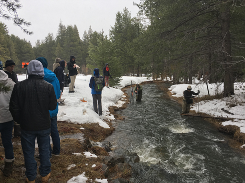 Students measuring streamflow