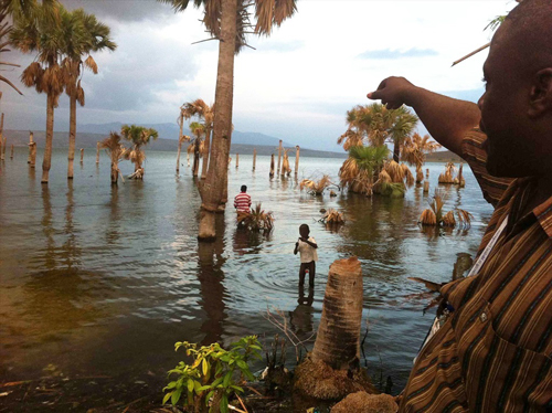 A farmer looks out on his now submerged farmland, swallowed by the Dominican Republic's Lake Enriquillo expansion.