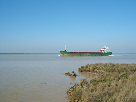 Researchers analyze the water dynamics in the Guadalquivir River Estuary.