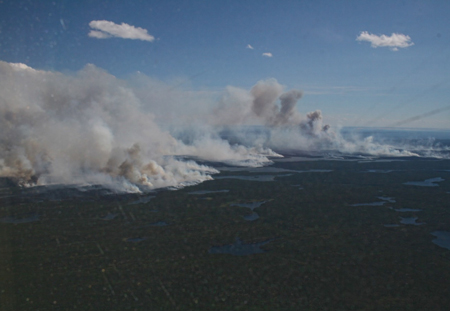 Black carbon in the atmosphere influences the Arctic climate.
