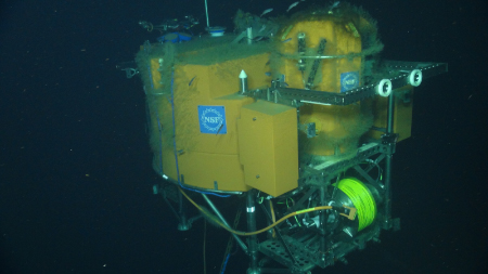 Biofouling such as algae growing on an array at Juan de Fuca Ridge's Axial Seamount could prevent sensors from reading data.