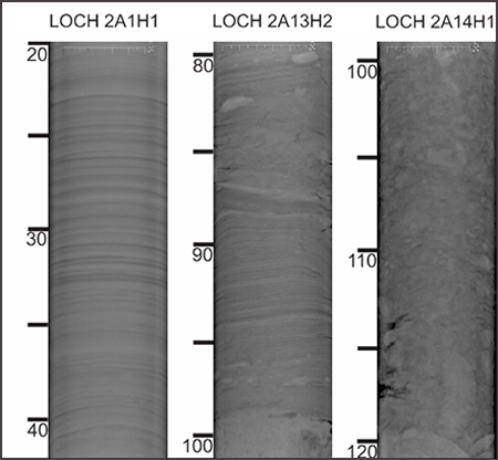 X-ray images of LOCH project core samples.