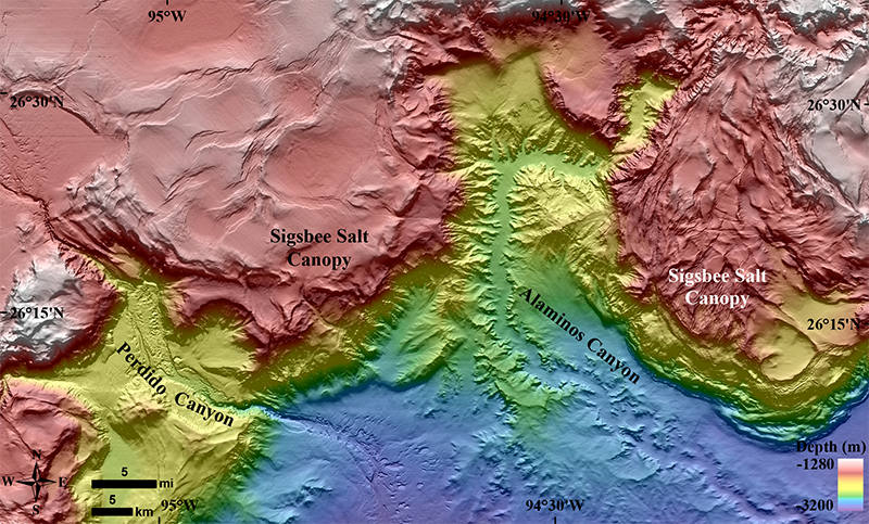 Spectacular new detail of salt tectonics in Alaminos and Perdido canyons and their associated fans, western Gulf of Mexico.
