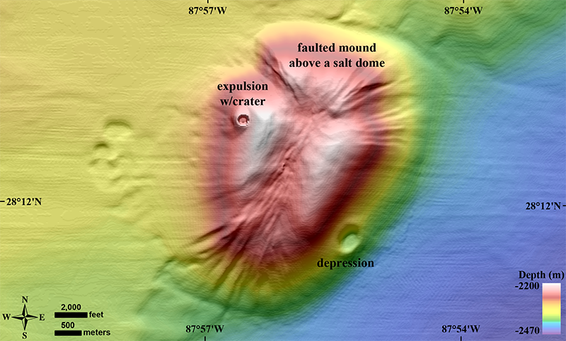 Salt tectonics has uplifted shallow sediments in the eastern Gulf of Mexico's abyssal plain.