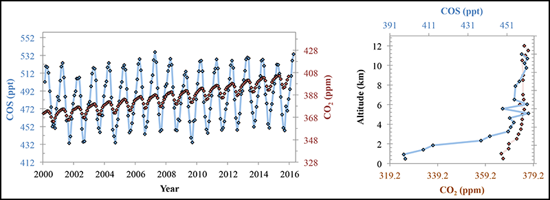 Concentrations of tropospheric carbonyl sulfide and carbon dioxide show a similar pattern of seasonal variations