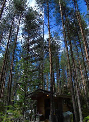 Monitoring site at the Hyytiälä Forestry Field Station in Finland measures the flow of COS between land and atmosphere.