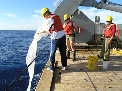 Researchers aboard the R/V Atlantic Explorer deploy a plankton net to sample the phytoplankton community.